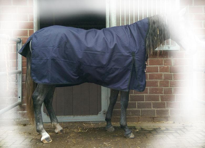 Regendecke Raincape 135 cm auf sehr schmalem Pferd