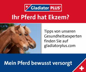 Gladiatorplus für Pferde mit Sommerekzem versandkostenfrei kaufen