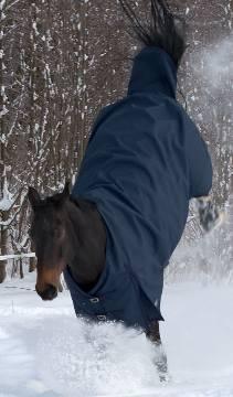 Winterdecken für Pferde und Ponys