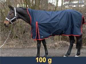 Übergangsdecke Raincape - 100 g High-Neck 1800 D